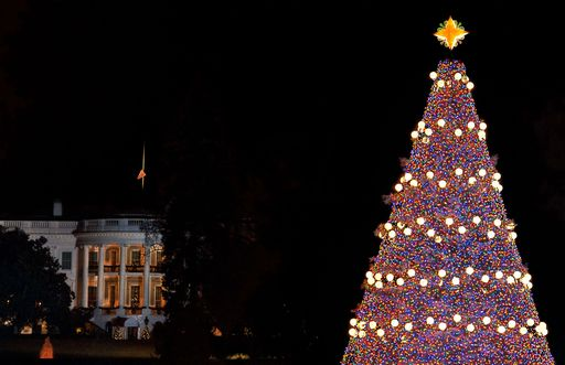 Internazionale stati uniti obama accende albero natale for Immagini new york a natale